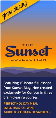 Introducing Sunset Seminars